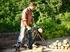 Изображение Цепная пила Bosch AKE 35 S 0600834500